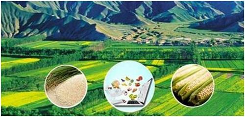 东川政策支持农村电商 电商销售农特产品最高可拿30万奖励